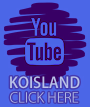 Canal de Youtube Koisland