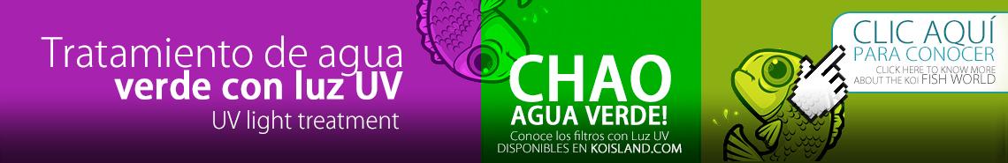 Eliminación de algas y agua verde con luz UV