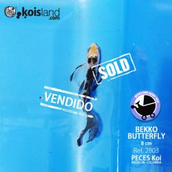 REF.2803 - Bekko Butterfly