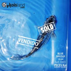 REF.3003 - BLUE SHUSUI 14cm