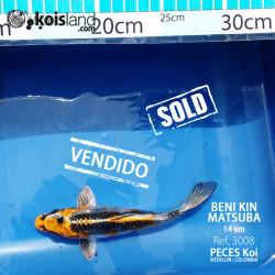 REF.3008 - Beni KIN Matsuba 14cm