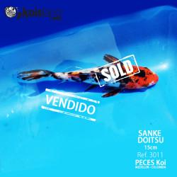 REF.3011 - Sanke Doitsu 15cm