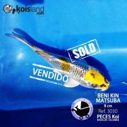 REF.3030 - Beni KIN Matsuba 8cm