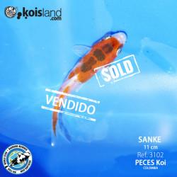 REF.3102 - Sanke