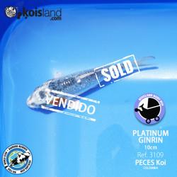 REF.3109 - Platinum Ginrin