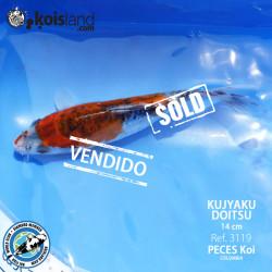 REF.3119 - Kujyaku Doitsu