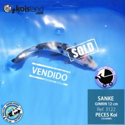 REF.3122 - Sanke 12cm