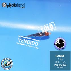 REF.3125 - Sanke 7cm