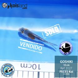 REF.3127 - Goshiki