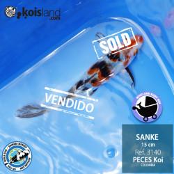 REF.3140 - Sanke 15cm