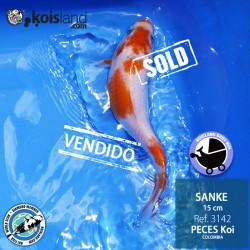 REF.3142 - Sanke 15cm