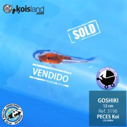 REF.3196 - Goshiki 12cm