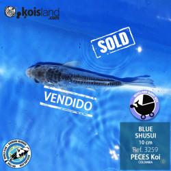 REF.3259 - BLUE SHUSUI 10cm