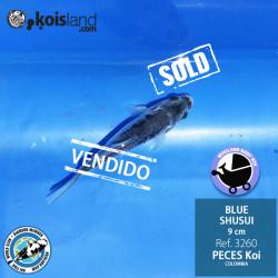 REF.3260 - BLUE SHUSUI 9cm