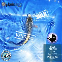 REF.3261 - BLUE SHUSUI 12cm