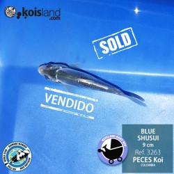 REF.3263 - BLUE SHUSUI 9cm