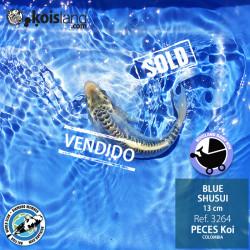 REF.3264 - BLUE SHUSUI 13cm