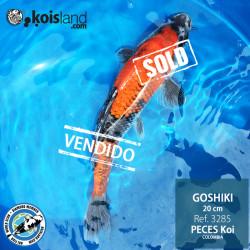 REF.3285 - Goshiki 20cm