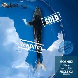 REF.3305 - Goshiki 35cm