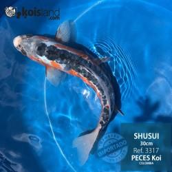 REF.3317 - Shusui 30cm