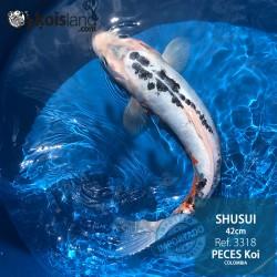 REF.3318 - Shusui 42cm