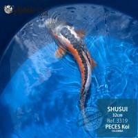 REF.3319 - Shusui 32cm