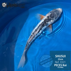 REF.3321 - Shusui 25cm